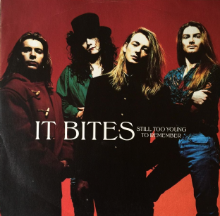 "It Bites - Still Too Young To Remember (12"") (VG+/VG)"
